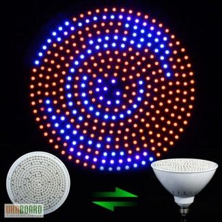 Светодиодная лампа для освещения растений 40W E27. Подсветка растений в зимний период