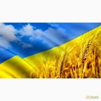 НАЙДУ ПОПУТНОГО ТРАНСПОРТ для грузоперевозки по Украине