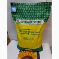 Соняшник НЕО - високоврожайний, посухостійкий гібрид під гранстар