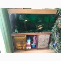 Продам аквариум на 300 литров