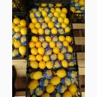 Продам лимон турция