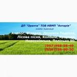 Насіння озимої пшениці від ДП Оранта ТОВ НВМП Антарія