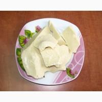 Какао масло натуральное «FAVORICH » (Малайзия)