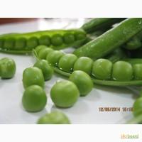 Семена овощного горошка Тиара 100 000 сем.