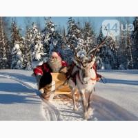 Буковель на Рождество из Киева, туры на Закарпатье на Рождество автобус