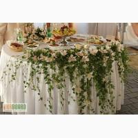 Прокат чехла на стул,ширма на свадьбу,оформление свадебного зала в Киеве