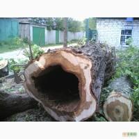 Спил деревьев спил аварийных веток, расчистка участка