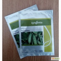 Семена огурца ПАСАЛІМО F1 Упаковка 500 семян