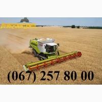 Аренда и продажа сельхозтехники