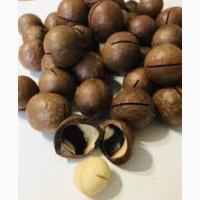 Орех макадамия в скорлупе, 1кг, орехи