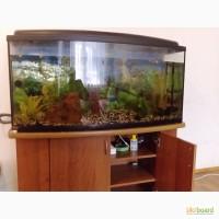 Продам аквариум 300л стумбой