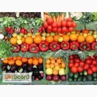 Продам крупным оптовикам сортовые семена овощей и зелени от производителя