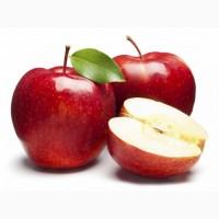 Купимо Яблука дорого