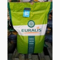 Распродажа семян подсолнечника 2017 года урожая