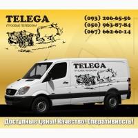 Перевозки грузовые Телега, Грузовое такси Телега