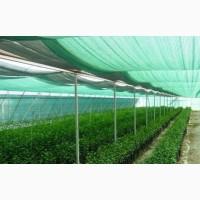 Сетка затеняющая Karatzis зеленая (8х50) 65%