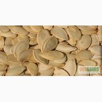 Семена тыквы, орех грецкий (целый и ядро), фасоль, кондитерский подсолнечник