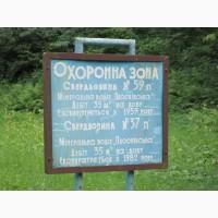 Плоскивская тип Боржоми, живая, эко, натур, природная, свежая минеральная вода из источник