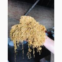 Продам табак импортный Вирджиния Голд, Венгерский