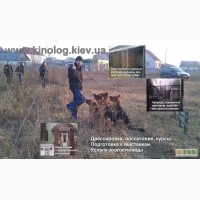 Общий курс дрессировки собак воспитание собаки на послушание собаки Кинолог Киев