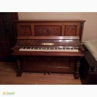 Пианино C.Neugebauer Nache
