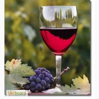 Бентонит для вина (виноделия) и браги