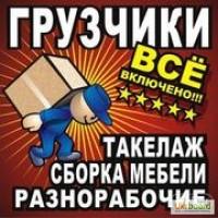 Услуги грузчиков недорого. Квартирный, офисный переезды