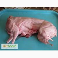 Продам мясо кролика свежее и копченное