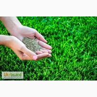 Посев газонной травы весной и летом, уход за газоном