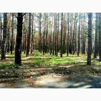 Продам земельный участок Киево-Святошинский район пгт.Буча – 6.5 га