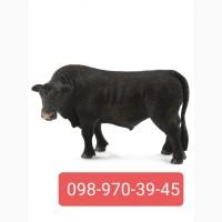 Заготівля бичків, корів, телят в будь-якій кількості)
