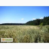 Продам участок 2 га под строительство в Березовке 17 км от Киева по Житомирской трассе