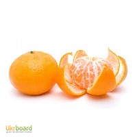 Оптовая продажа цитрусов, фруктов и ягод