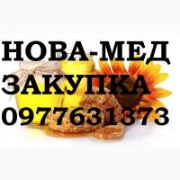 ЗАКУПКА МЁДА - Высокопольский, Каховский, Нововоронцовский, Великоалександровский РАЁН