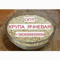 Продам Крупу Ячневую от Производителя из Винницы Оптом