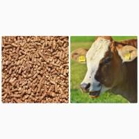 Комбікорм для ВРХ, корів, телят