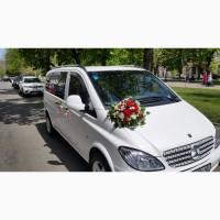 Авто на свадьбу (Mercedes Vito, Sonata YF, Sprinter) Самые низкие цены
