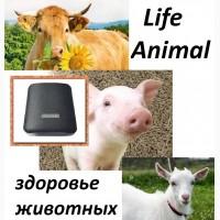 Лечение животных дома прибором Life Animal. Антипаразитарная и другие программы