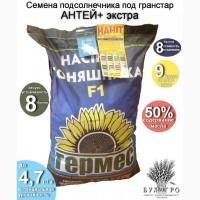 Семена Подсолнечника Под Гранстар Антей+ Экстра