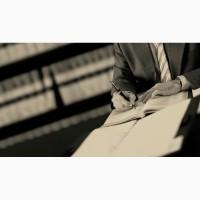 Юридическая помощь в публичных закупках