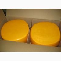 Оптом моцарелла, фета, сырный продукт