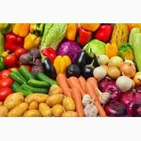 Продам овощи оптом