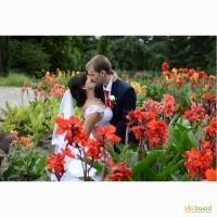 Фотограф и видеооператор на свадьбу, выпускной, фотосессия. Ирпень, Киев и область