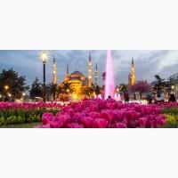 Фестиваль Тюльпанов в Стамбул от 185 $