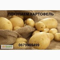 Срочно покупаем картофель, Харьковская обл