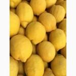 Продаем лимоны. Испания