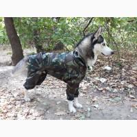 Продам комбинезон дождевик для средних крупных собак