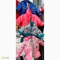 Детские демисезонные куртки Микки Маус от полугода до 2, 5 лет