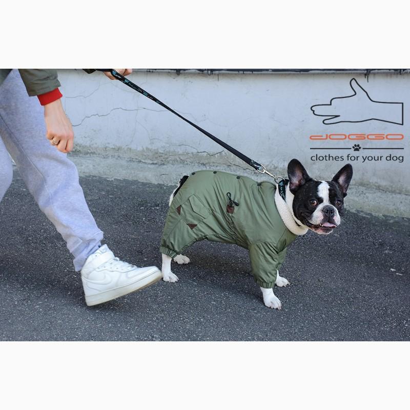 Фото 16. Одежда для собак французский бульдог и крупных пород - ТМ DOGGO