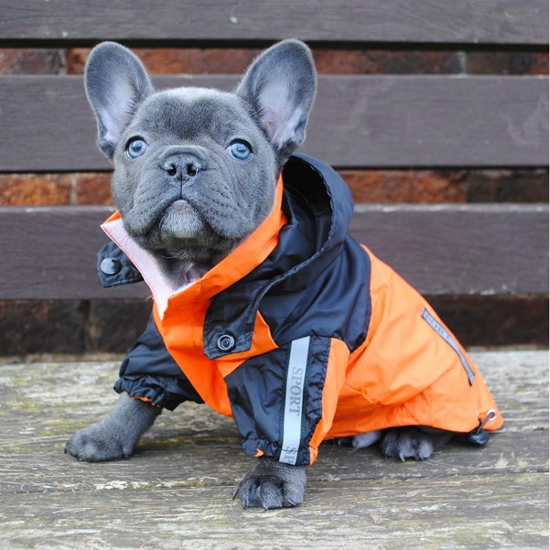 Фото 20. Одежда для собак французский бульдог и крупных пород - ТМ DOGGO